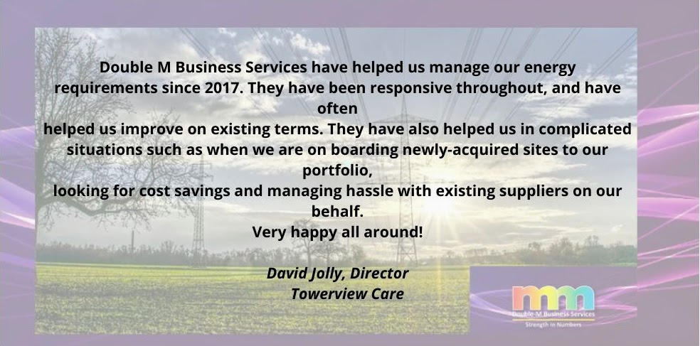 Double M Business Services testimonial